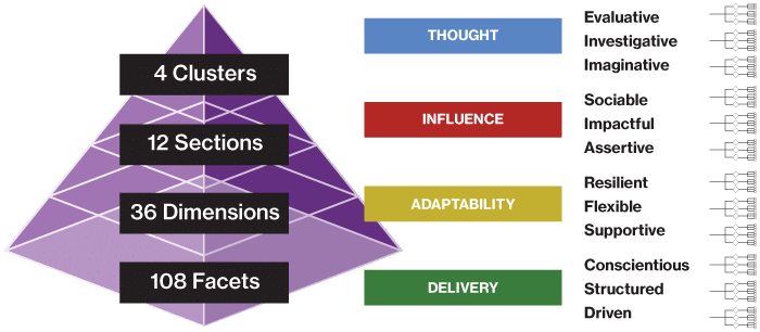 Saville Wave's Hierachical Competency Framework